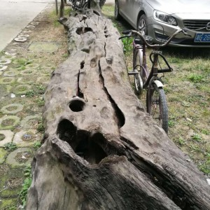 湖南张家界专业生产优质阴沉木