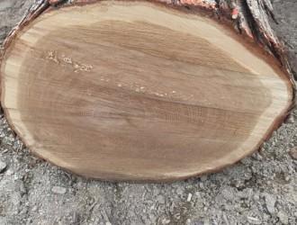 北美白橡原木