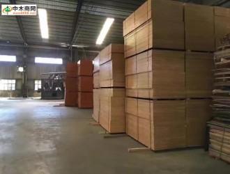 建筑模板 物流配送 林动木业