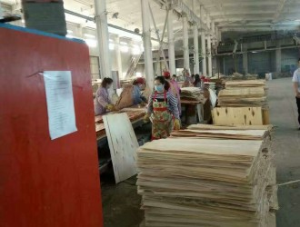 正欣木业多层胶合模板_产品图片