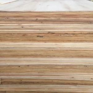 厂家直销 各种规格一级,二级桉木单板 地板基材等