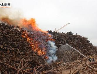 广西上思木材厂发生火灾