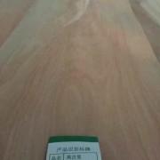 山东宏图木业有限公司