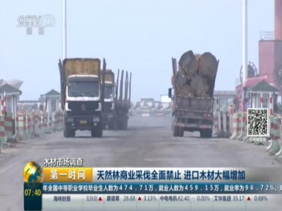 木材市場調查:天然林商業採伐全面禁止  進口木材大幅增加 (460播放)