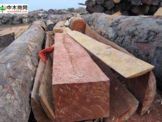 加拿大贸易部出访越南、新加坡以及文莱 为加拿大木材寻更多市场机会