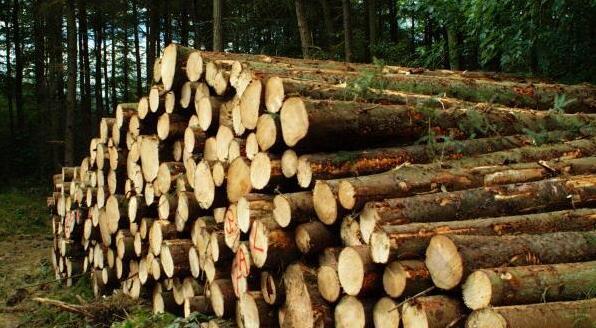 木材的用途?