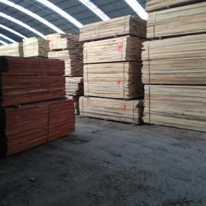 杨木榆木白椿木烘干板材
