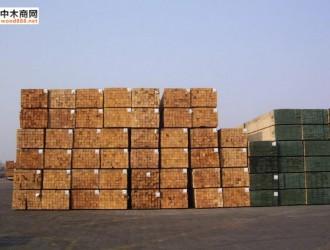 上海木材进出口企业培训座谈会召开