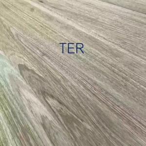 榄仁木(TER)