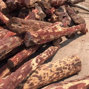 赞比亚血檀原木