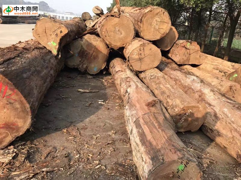 进口龙凤檀原木,板材