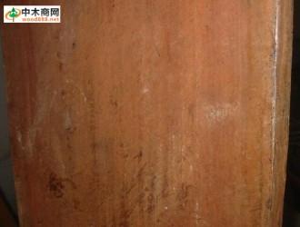 蚬木(广西铁木)