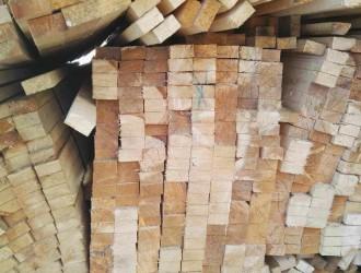 二连浩特市远恒木业主营:落叶松原木、白松、樟松