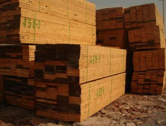 常年大量收购23厚白杨木家具板材湿板干板均可