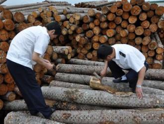 浙江省红木产业协会组织木材检验技能实际操作考试
