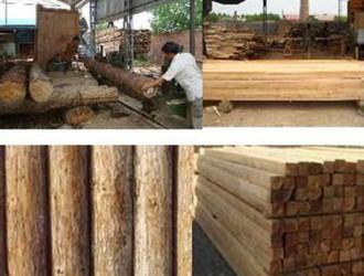 办木材加工厂正常生产需要哪些程序和准备工作?