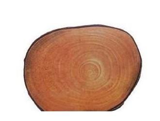 广西木材图谱:广西珍稀优良树种图库/凤凰木