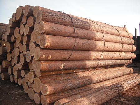 做家具就该懂的木材含水率