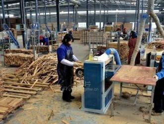 福建省将乐县三举措进一步规范木材经营加工企业管理