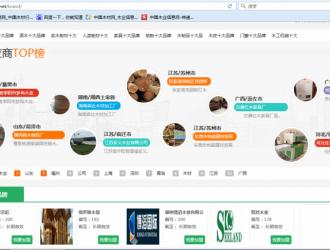 中国林产工业协会秘书长石峰谈林业品牌建设