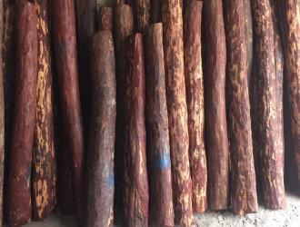 印度小叶紫檀_仙游长欣木业
