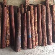 仙游长欣木业
