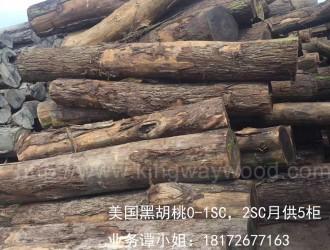 近期进口原木市场 加拿大大火导致北美材全线飙涨