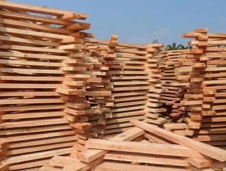 分析本周木材市场 预计8月后仍将持续淡季