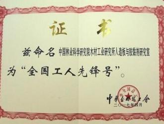 """中国林科院木工所人造板与胶黏剂研究室被授予""""全国工人先锋号"""""""