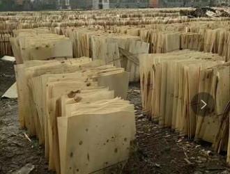 襄阳杨木板皮
