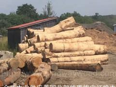 木业专人验货进口美国北部红橡原木旋皮材 美式家居材