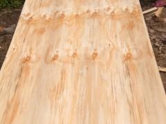 3×6尺辐射松面皮