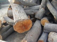 长期供应大量血柏木核桃木梨木楸木原木