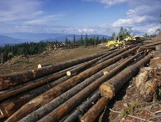 美商务部将在11月14日宣布加拿大木材终裁税率
