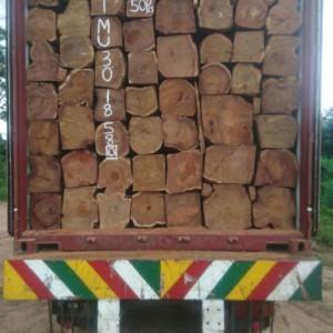 尼日利亚一手货源刺猬紫檀亚花梨