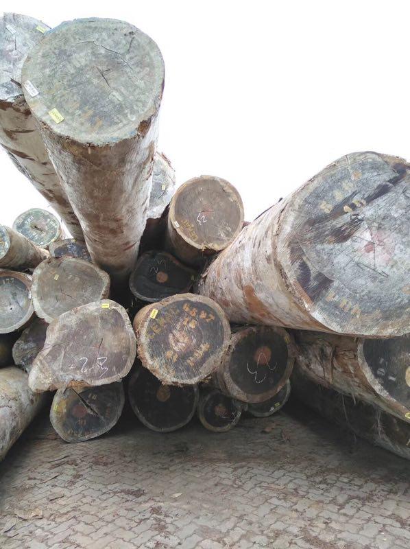 精品红花梨原木价格多少钱一立方米供应