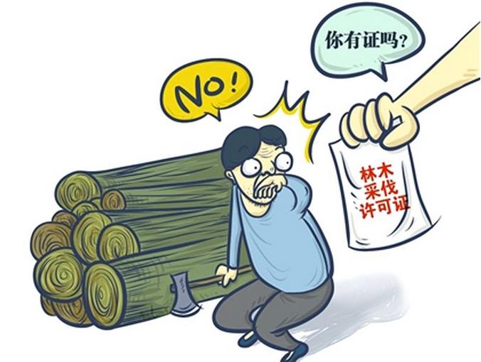 湖南新化森林公安破获一起非法收购盗伐滥伐林木案