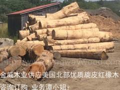 木业最新供应20柜美国红橡原木旋皮材 红橡家具橡木
