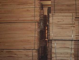 白椿木烘干板材_批发,价格,图片,品牌_建淼木业加工厂家直销