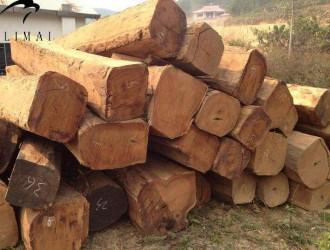 缅甸全面停止木材出口 花梨5个月涨了50%