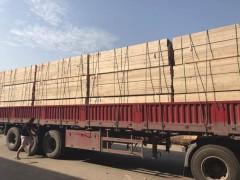 南通新西兰辐射松建筑木方厂家直销