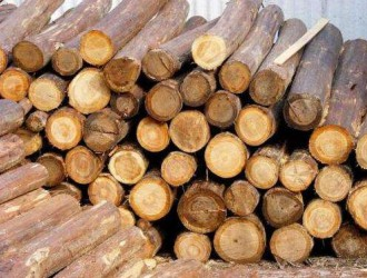 各国对木材出口严格管制 国内市场迎来木材紧缺问题