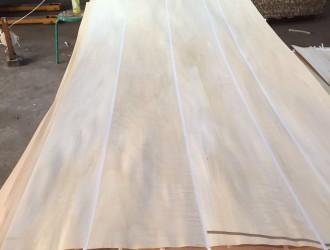 牡丹江旭升木材加工厂专业生产:【椴木、桦木、柞木】木皮,单板