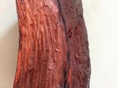 供应非洲血檀原木