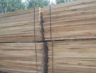 河南白杨木板材这种木材做的家具好吗?