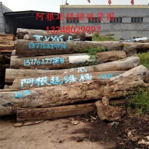 阿根廷绿檀去皮原木