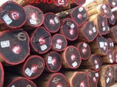 非洲刚果精品红花梨原木