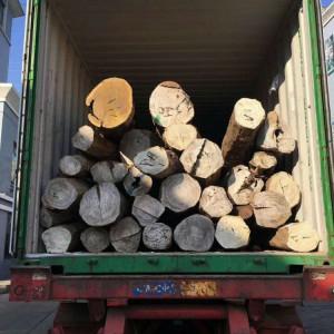 张家港一手货源供应阿根廷绿檀原木