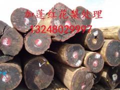 加蓬红花梨原木现货特价处理