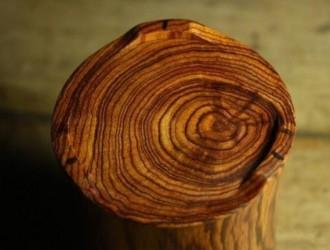 """大叶黄花梨这种木材短短几年价格狂翻二十倍,或将成为下一种天价""""黄花梨"""""""